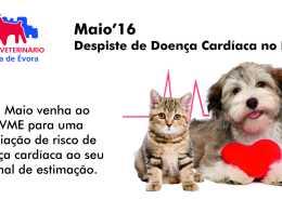 Campanha Coração Maio 2016 banner