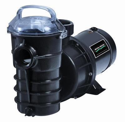 Pentair Dynamo Pool Pump 15 HP 115/230v