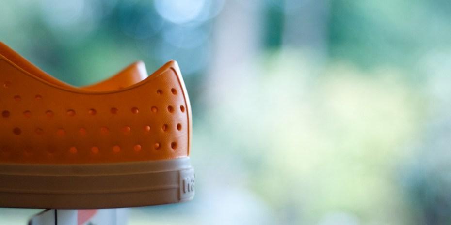 Image of Damian Van Zyll De Jong: Native Shoes
