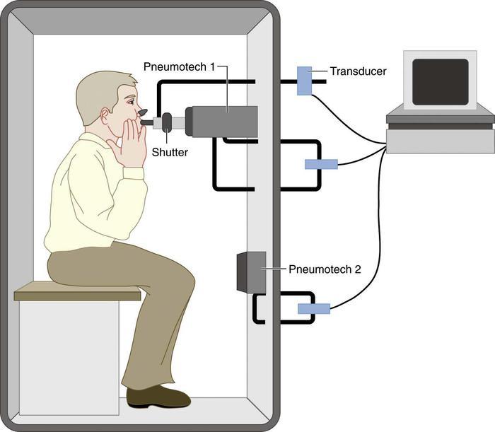 Body Plethysmography A Pulmonary Function Test
