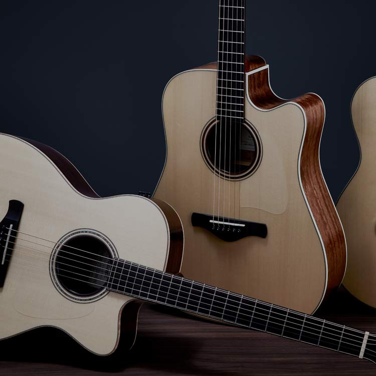 ACOUSTIC GUITARS PRODUCTS Ibanez guitars