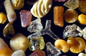sands-under-the-microscope