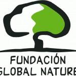 logo_fgn-2