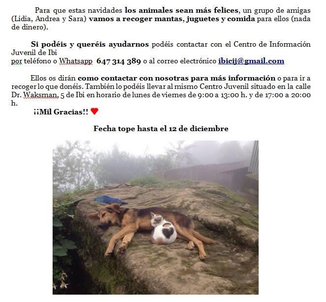 perros-solidadrios