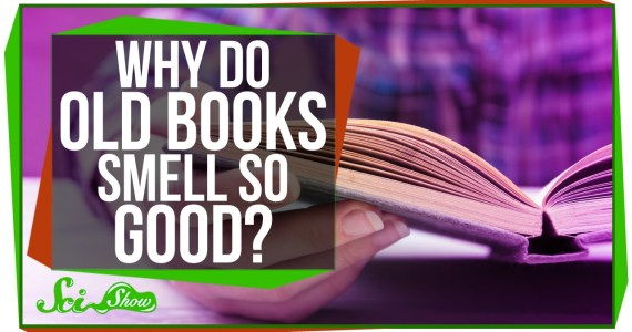 Why-Do-Old-Books-Smell-So-Good