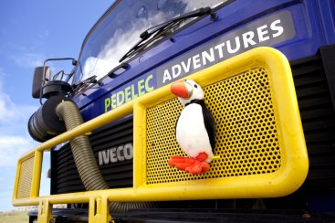 Our mascot, the puffin, is home in northern Iceland (AG)