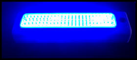 blue-light-new