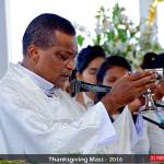 Rev. Celebrating the Holy Mass