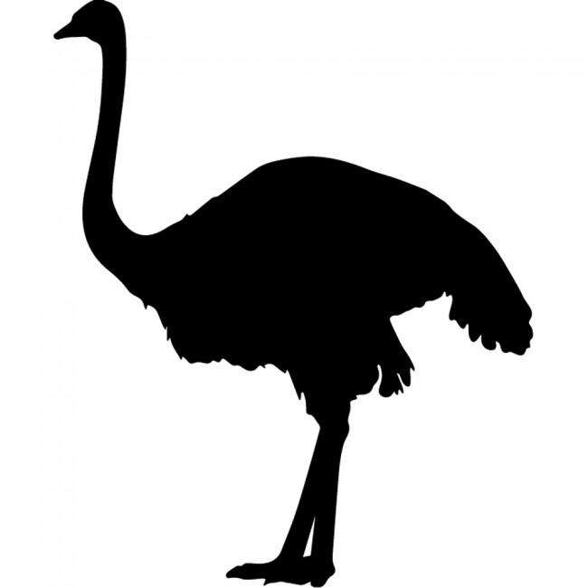 Black Removable Wallpaper Standing Ostrich Silhouette Wall Sticker Creative Multi