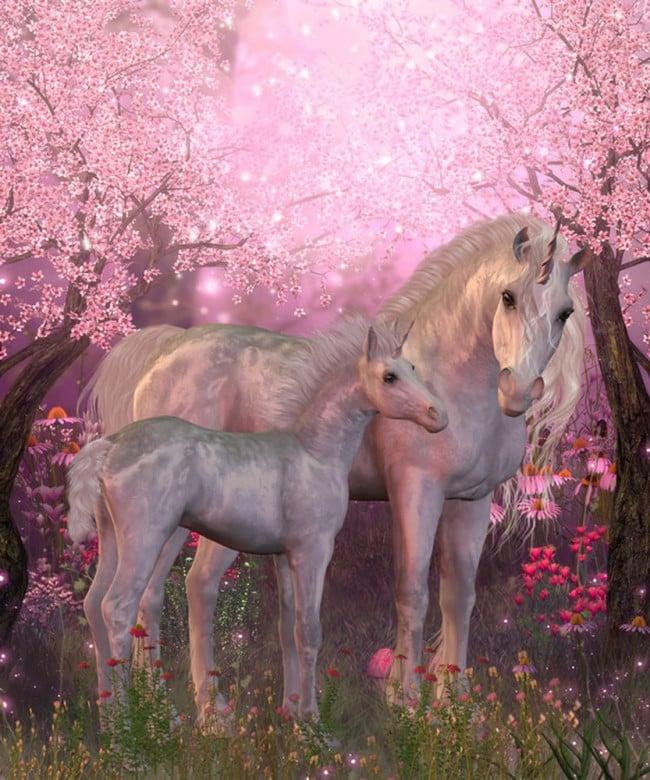 Horse Riding Wallpaper Hd Pink Blossom Unicorn Wall Mural Wallpaper
