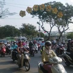 Viagem ICote | dias 22 a 26: Vietname que encanta