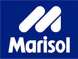 Logos Marisol