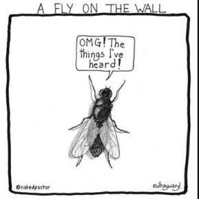 English in the News--Fly on the Wall 隱密觀察