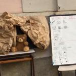 Classi seconde: A caccia dell'orso