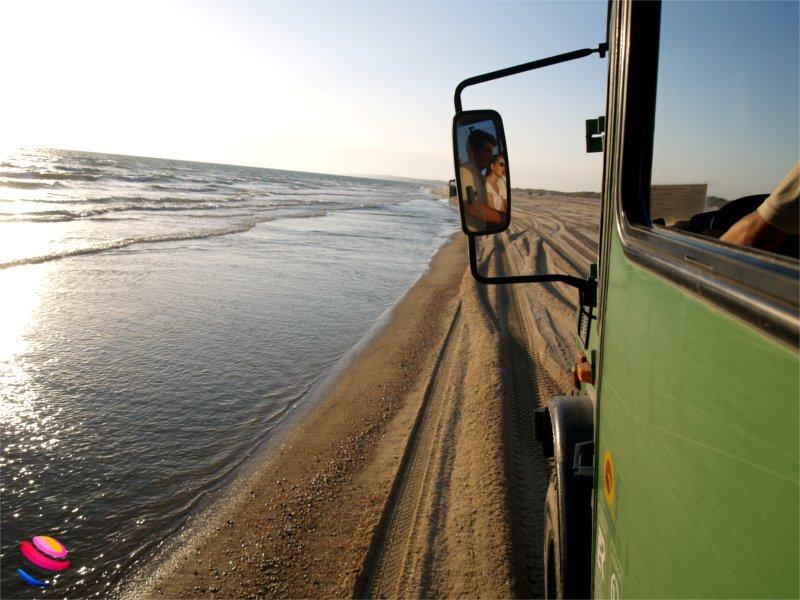 Andalusia: il Parco Nazionale di Doñana - Idee Di Tutto Un Po'