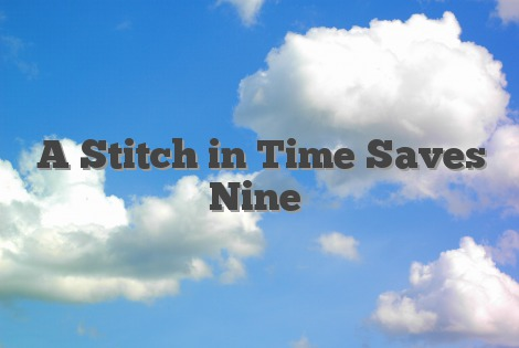 A stitch in time saves nine essay