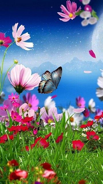 360x640 popular mobile wallpapers free download (1) - 360x640 - iFreeWallpaper