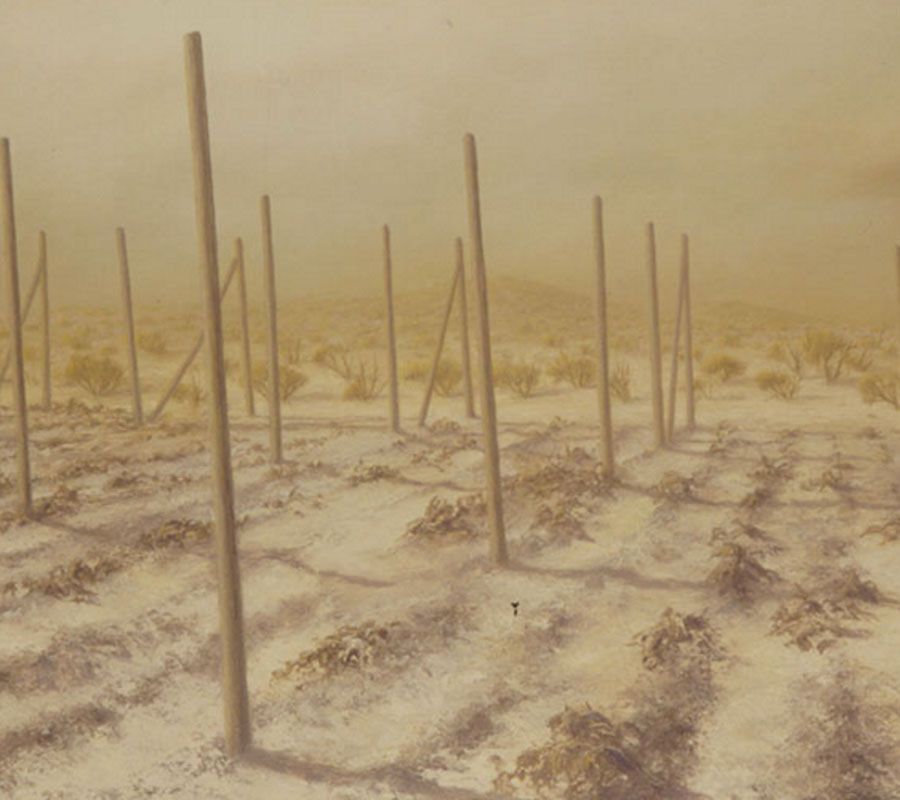 obra-desiertos-thmb