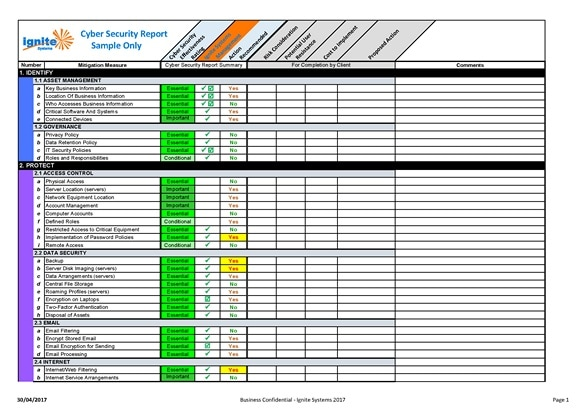 Cyber Security Risk Report - Ignite Systems - sample security risk assessment