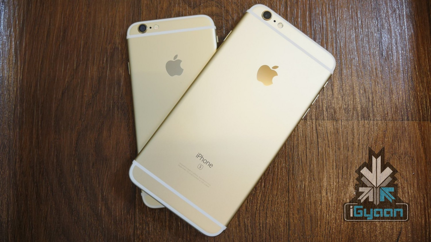 iPhone 6s and 6s plus igyaan 2