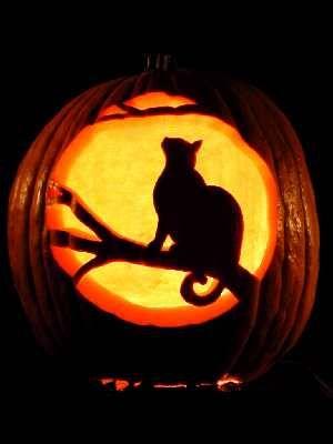 11 awesome cat pumpkin carving ideas! - cat pumpkin template