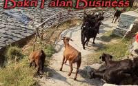 Bakri-Palan-Business