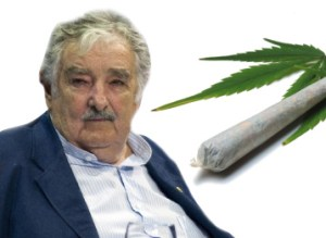 mujica