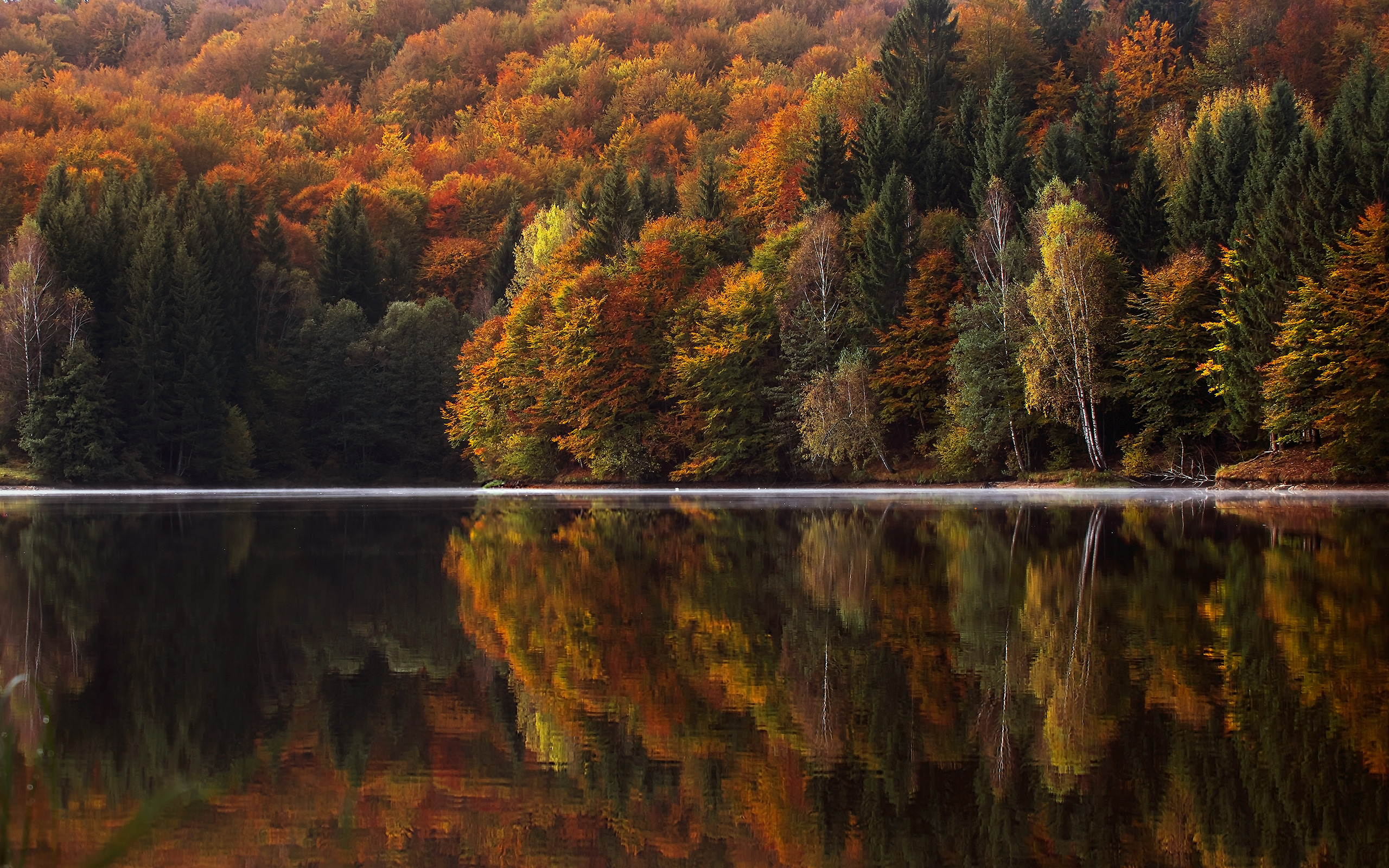 Fall Leaves Wallpaper Windows 7 Daily Wallpaper Autumn In The Mountains I Like To Waste