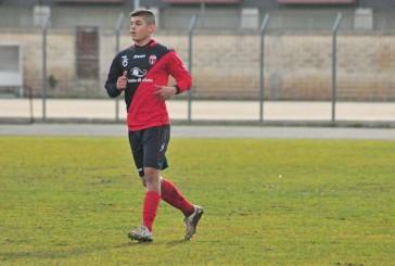 Andrea Cicerello è il nuovo attaccante della Vastese