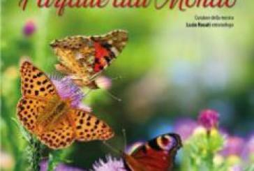 """A Vasto l'esposizione """"Farfalle dal Mondo"""""""