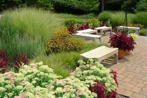 The Xeriscape Solution