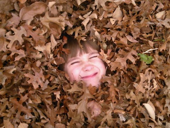 Fall Fun I Love Halloween