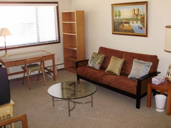 George Puzaku0027s Furnished 1 Bedroom And Studio Apartments SE Mpls   One Bedroom  Apartments