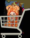 shoppingcart-10-100pxl