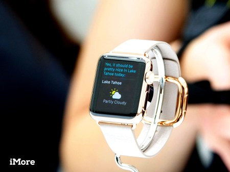 Wrist Watch Bands