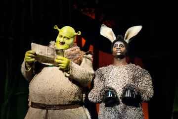 Dean Chisnall (Shrek) and Idriss Kargbo (Donkey). Image by Helen Maybanks.