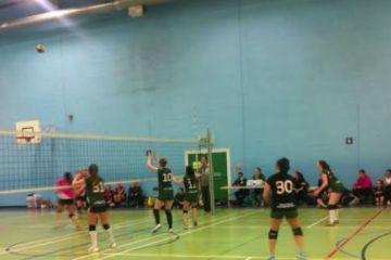 varsity volleyball