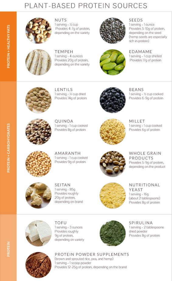 High Protein Vegetarian Foods List In India