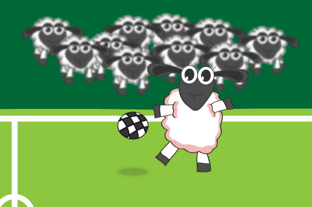 Fußballspieler Schaf