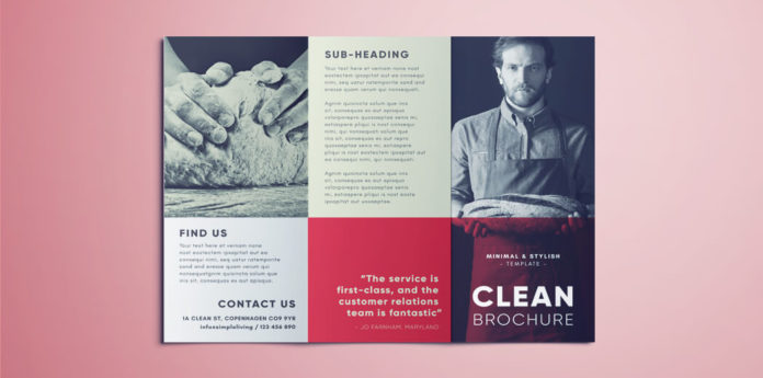 Amazing Clean Trifold Brochure Template Free Download - phamplet template