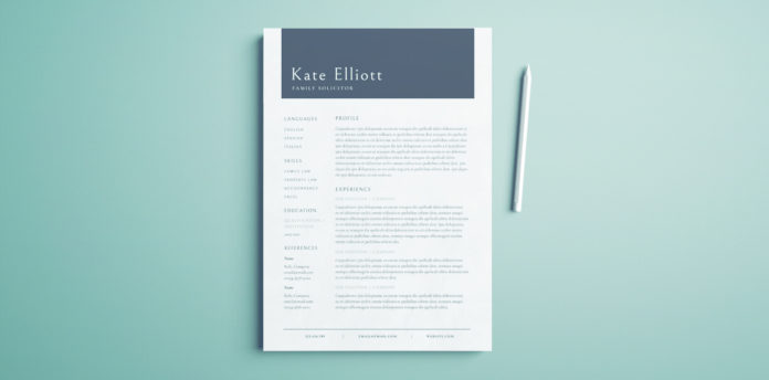 Professional Resume Template Free InDesign Templates - resume templates it professional