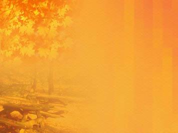 Hd Wallpaper Texture Fall Harvest Fall Autumn 03 Powerpoint Templates