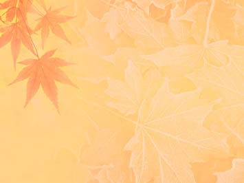 Fall Themed Wallpaper Fall Autumn 08 Powerpoint Templates
