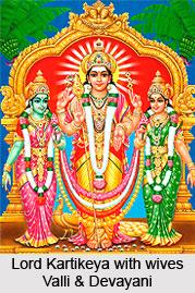 Child Wallpaper Hd Origin Of Lord Kartikeya