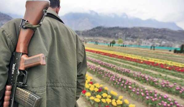 Kashmir, continuano gli scontri tra LeT ed esercito indiano. 25 le vittime