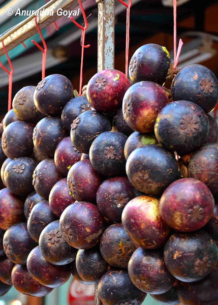 how to say mangosteen