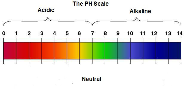 Acid And pH - ph chart