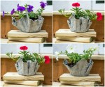 Cement Planters Made With Cloth