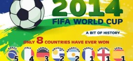 fifa-worldcup-2014-infographic