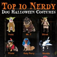 Top 10 Nerdy Halloween Costumes For Dogs (Infographic)